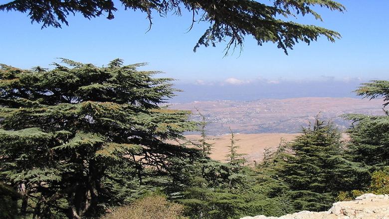 منطقة الجبل مفتوحة للتعبير الحر... لكن ليس للإستفزاز أو إفتعال الأحداث!