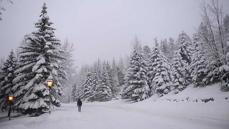 العاصفة تشتد بدءاً من بعد الظهر... والثلوج تلامس الـ500 متر