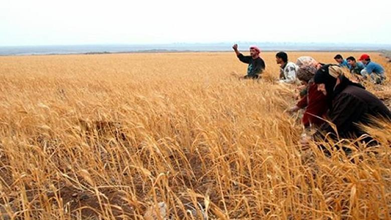 صرخة للمزارعين لتسهيل مرور الشاحنات المحملة بالخضار والفواكه