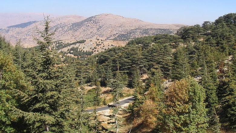 لكل هذا... الجبل أرضٌ للسلام