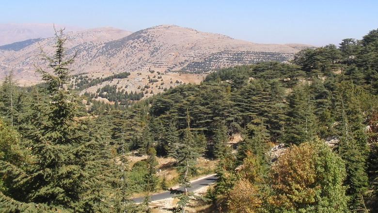 الراعي وجعجع في الجبل... وجنبلاط أكثر تمسكا بالحوار والانفتاح