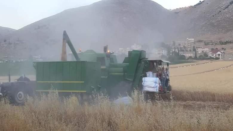 مزارعو البقاعين الاوسط والغربي وراشيا يطالبون الدولة دفع مستحقاتهم