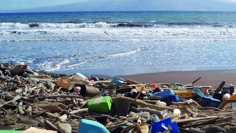 حقائق بيئية خطيرة نضعها بتصرّف الثورة