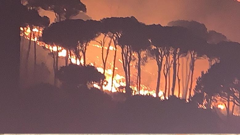 """""""التقدمي""""- المتن يشكر المساهمين بإطفاء الحرائق: المطلوب تدابير وقائية لحماية الأحراج"""