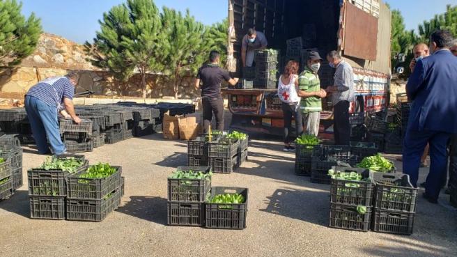 """اتحاد بلديات جبل عامل أطلق مشروع """"الزراعة البيتية"""" لدعم المزارعين"""