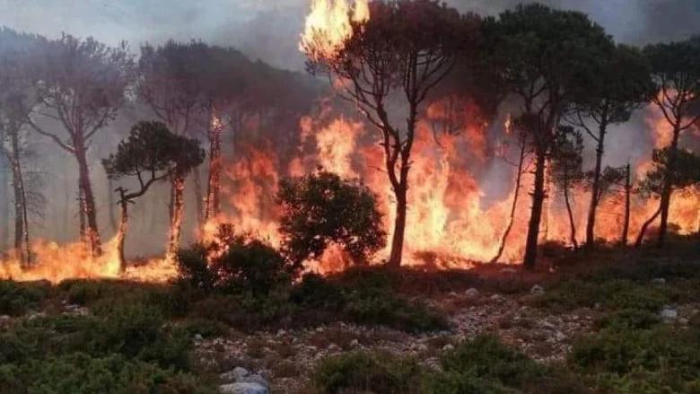 حريق قضى على أشجار حرجية في محيط درب المسيلحة
