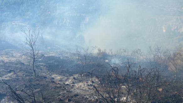 بالفيديو: تجدد الحريق في كفرفاقود وإستقدام طوافات