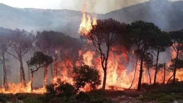 الريس: النيران المستعرة لا تفرق بين منطقة وأخرى.. وأبطال الدفاع المدني طالت مأساتهم وآن أوان علاجها