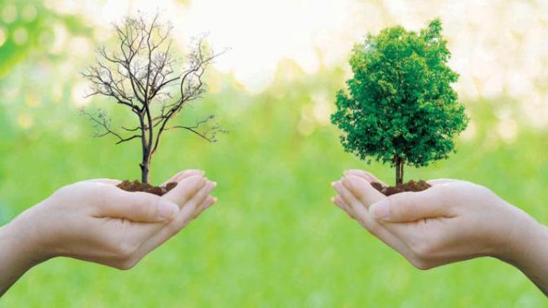 بعيداً عن التنظير... ما هو دور القطاع الأهلي البيئي؟