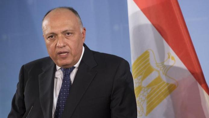 مصر تكثّف تحركاتها على خط الأزمة السورية.. والسعي إلى تسوية سياسية