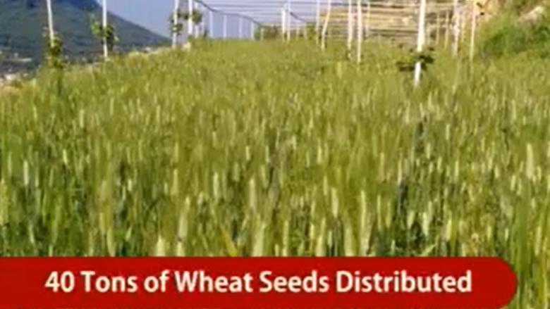 دعماً للإنتاج الزراعي... مساعدات مؤسسة الفرح الاجتماعية بالأرقام