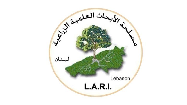 الابحاث الزراعية: لرش الاسمدة قبل الامطار
