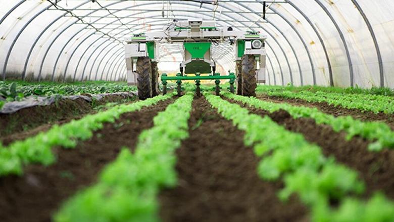 دعوة للمزارعين الى مراجعة وزارة الزراعة لاستلام المبيدات والادوية المجانية