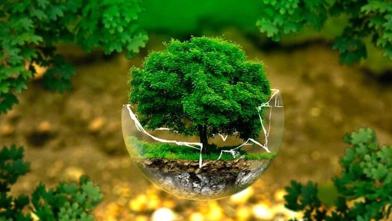 """""""جمعية غدي"""" في اليوم العالمي للبيئة: لتكريس الشفافية في كل ما يتصل بحياتنا ومصيرنا"""