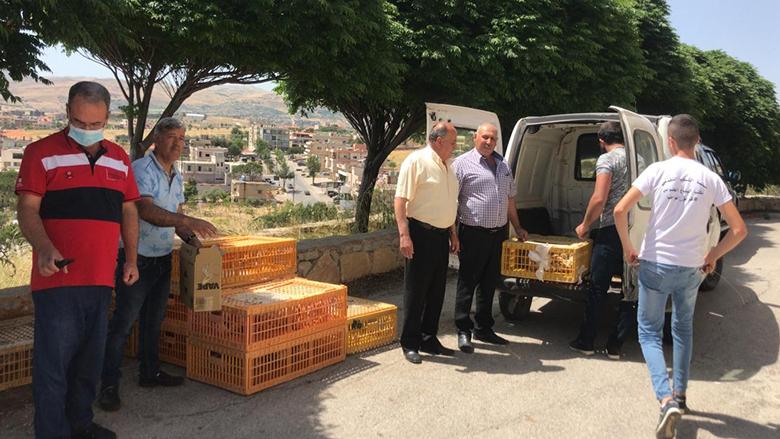 """توزيع 8000 طير دجاج من مؤسسة """"الفرح"""" في راشيا"""