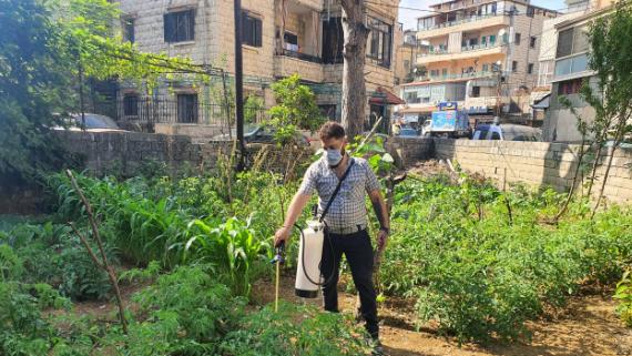 """حملة رش مبيدات للمكتب الزراعي في """"داخلية عاليه"""""""