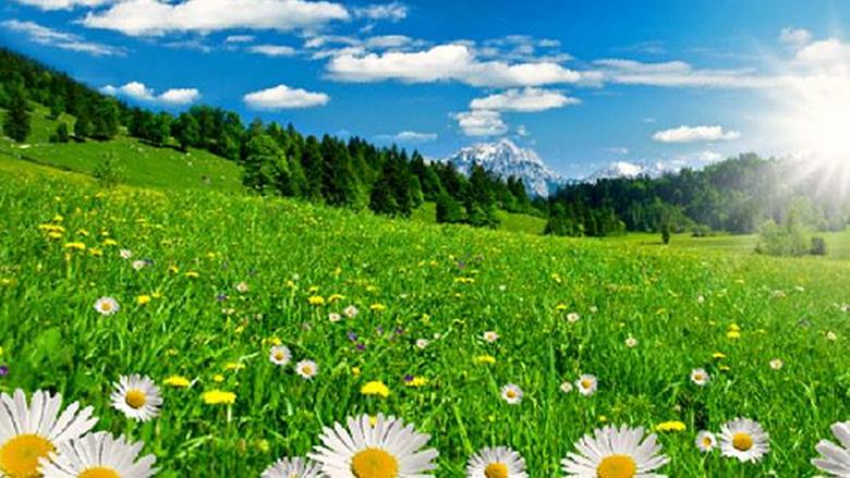 طقس صيفي رطب... وارتفاع درجات الحرارة في عطلة نهاية الأسبوع