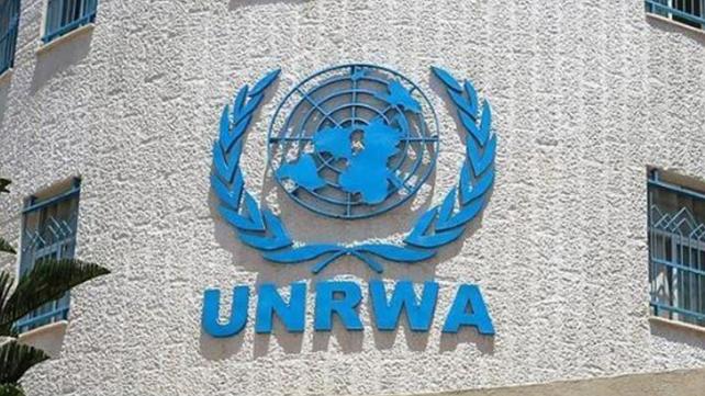 الأونروا: 28 إصابة جديدة بين الفلسطينيين في 4 مخيمات وصيدا