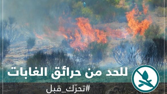 محمية أرز الشوف: إرتفاع خطر اندلاع الحرائق هذا الاسبوع... ولتوخي الحذر وعدم إضرام النار
