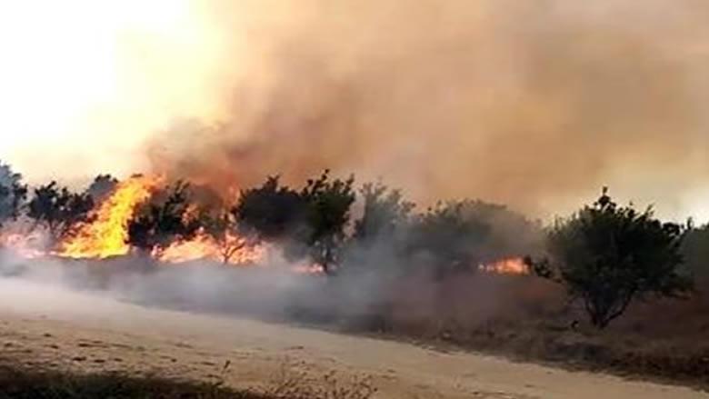 """حريق في مرج بسري...والناشطون: """"قد يكون مفتعلًا"""""""