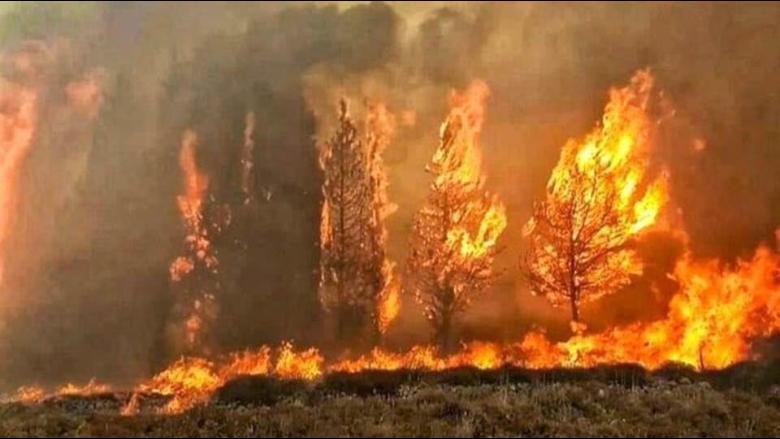 مؤشّر الحرائق مرتفع والخطر دائم... لبنان غير مؤهّل للتعامل مع الكوارث