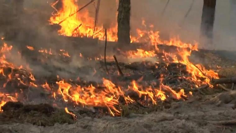 تجدّد الحريق في مرجحين والدفاع المدني يعمل على محاصرة النيران