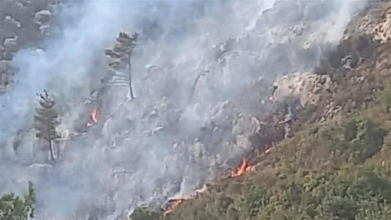 بالصورة: حريق في منطقة حرجية بقبعيت العكّارية