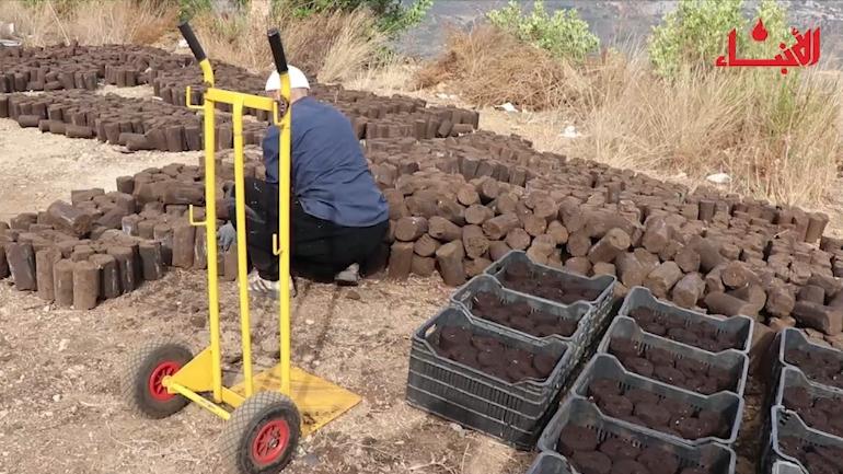 على أبواب الشتاء.. مبادرة Eco Briquettes لحماية الثروة الحرجية!