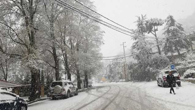 راشياترزح تحتتأثير العاصفة.. أضرار وإنقطاع للكهرباء