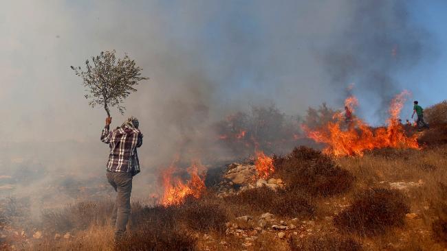 تسويف التأليف يجد ذريعةً إضافية في إجازة العيد... ومواجهة جديدة ترسمها فلسطين