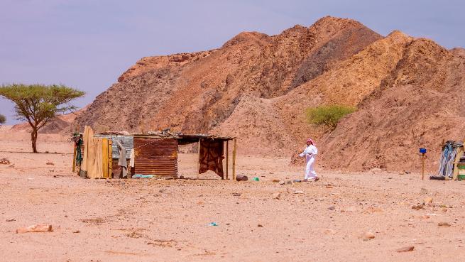 خواطر في الصحراء: النشامى والجيش الثوري