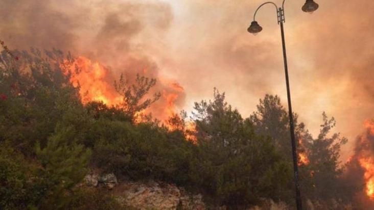 مصلحة الأبحاث الزراعية: تجدد الحرائق في بعض مناطق عكار