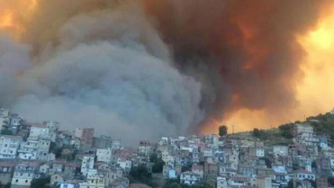 مصرع أكثر من 40 شخصًا في حرائق غابات تجتاح شمال الجزائر